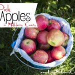 U-Pick Apple Orchards in McHenry County