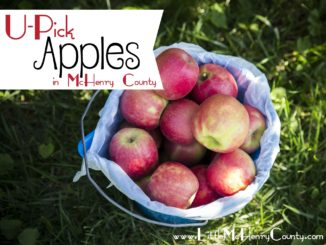 u-pick apples in mchenry county