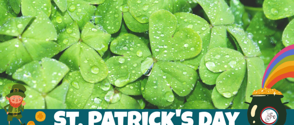 st. patricks day in mchenry county