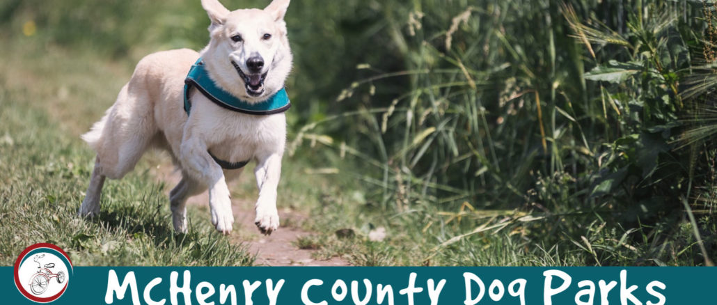 mchenry county dog parks