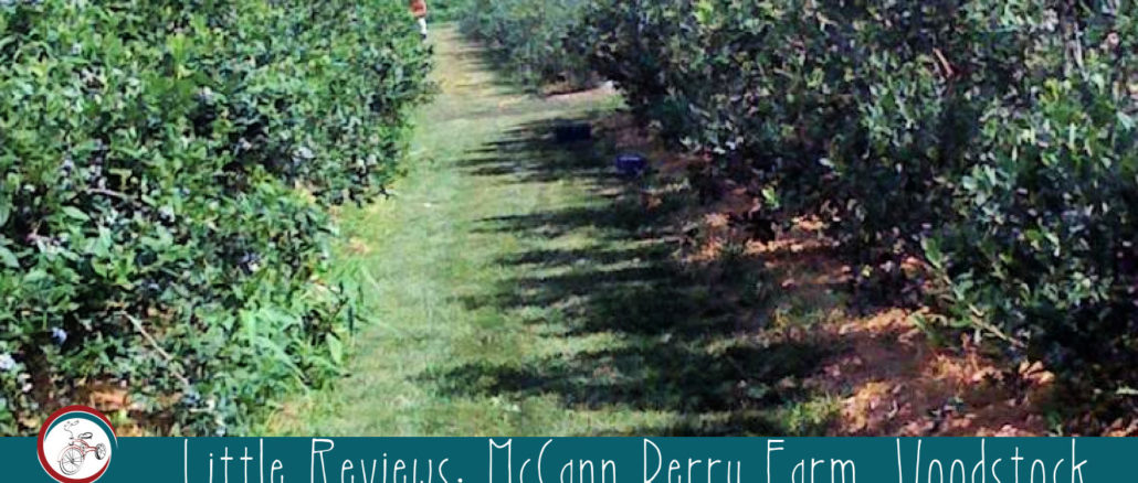 McCann Berry Farm, Woodstock